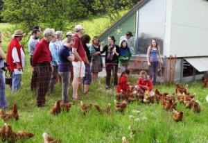 …und viele glückliche Hühner!