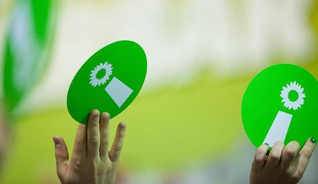 mitglied bündnis 90 die grünen